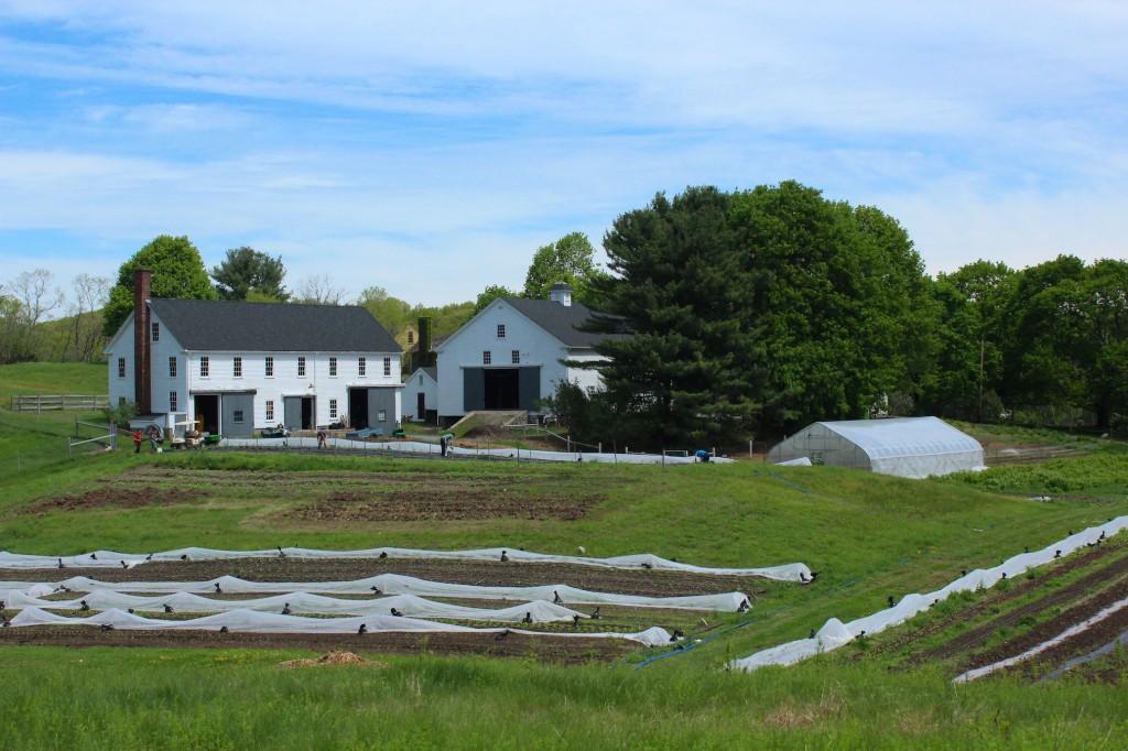 Squash House and 1827 Barn (Rebekah Carter 2014)