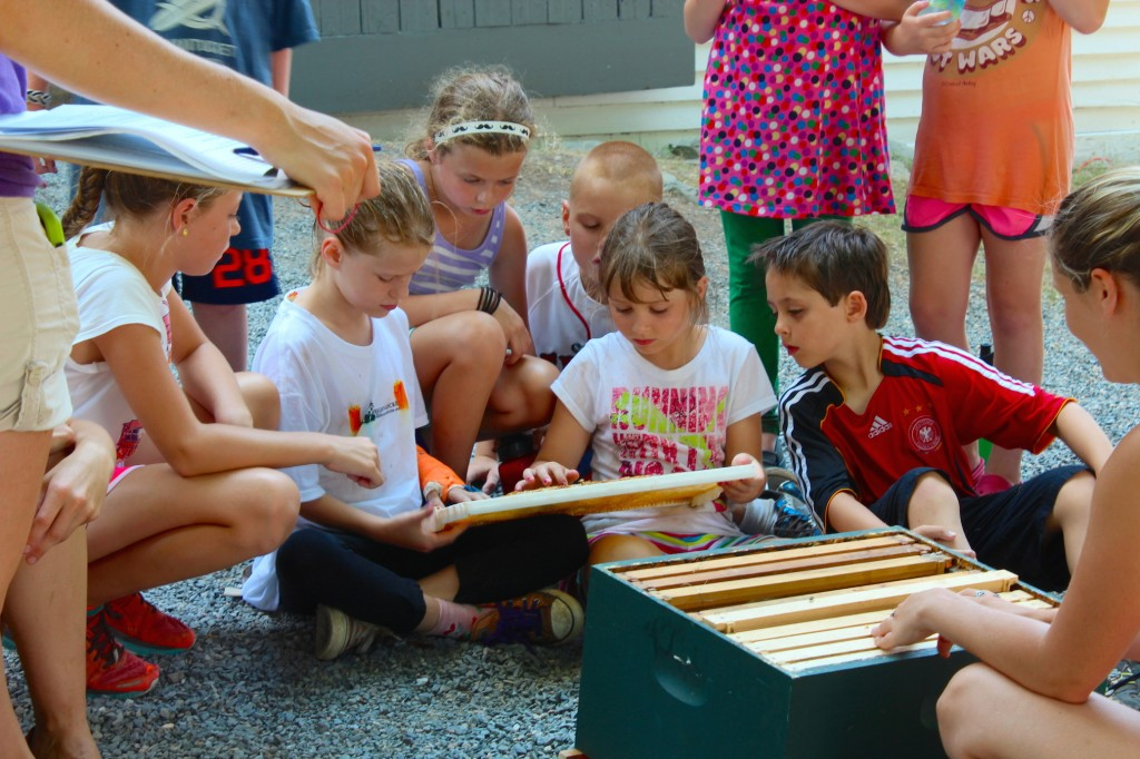 Kids explore a Langstroth hive during summer program (Rebekah Carter 2013)