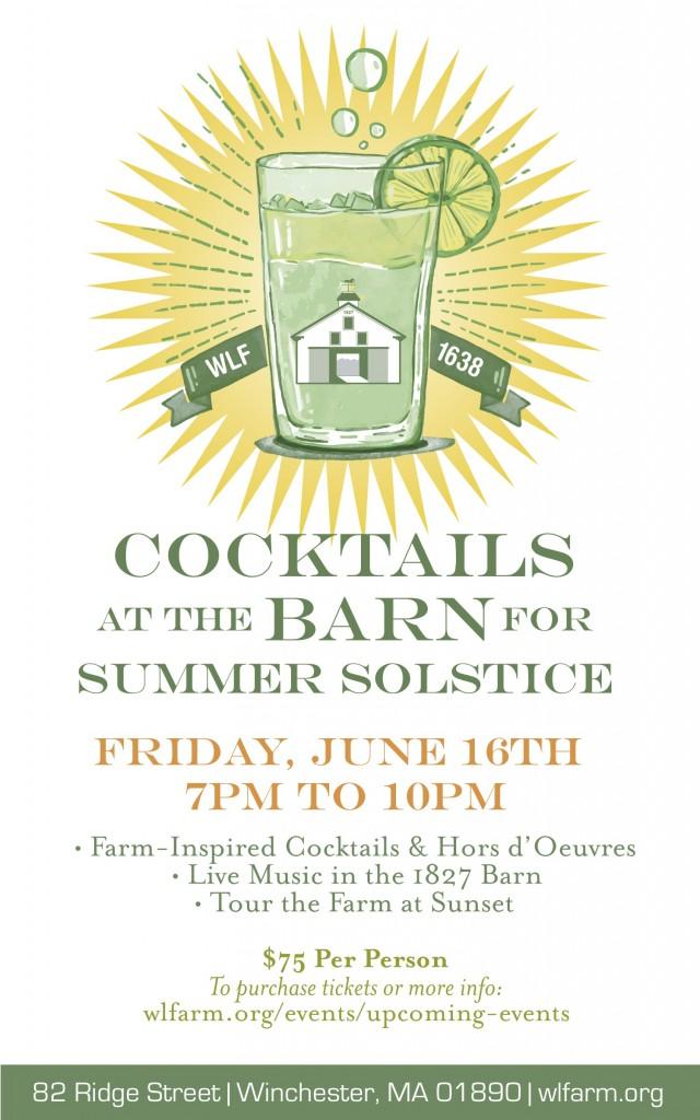 Summer Solstice 2017 (2)