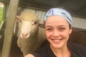 Brianna+sheep