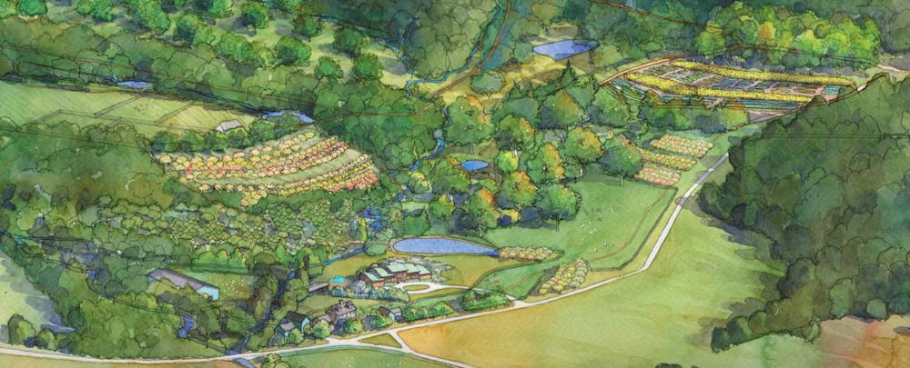 Agroforestry at Wright-Locke