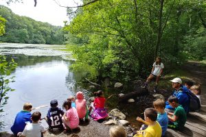 Forest Friends Program for Preschoolers